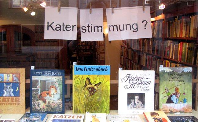 Schaufenster Katzenbücher